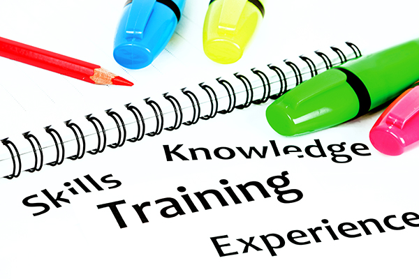 Graphic depicting skills, training, knowledge, experience